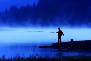 Blue fisher