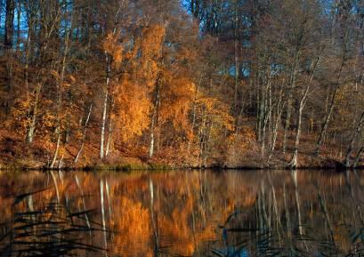 Bygholm sø, Horsens